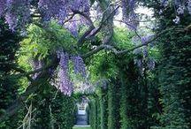 Příroda,zajímavé domky,květinová zákoutí, kulturní památky