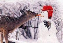 Silly snow buddies!!!!