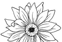 CP - Floral / Really Line Drawings of All Kinds - Can be colored - Used in embroidery - felt or other craft projects - or just ideas to practice drawing