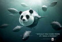 Save the ocean / Animals/funny