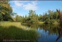 Bonnechere Provincial Park / Images from Bonnechere trips over the years