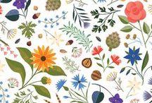 Illustrationen flowers