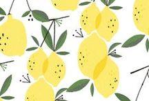 Illustrationen fruits/eat