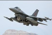 F- 16 Fighting Falcon (General Dynamics)
