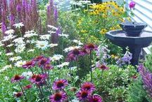 """OUTDOOR: Garden & DIY"" / Be inspired by these amazing Yard, Garden and Plant Growing advice, tips & tricks! See gorgeous Outdoor DIY, Outdoor Decor and Outdoor Living projects. Contributors: No recipes please. All links must lead to the original source. Board owner reserves the right to delete pins that are off topic.  / by Setting for Four"