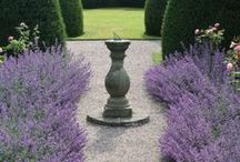 Classical / Classical garden elements and composition.