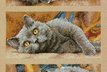 cross stitch / kocie schematy