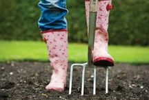 Spring / Ideas and inspiration to entice you back into the garden this spring.
