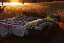 Camping / by Emily Tinuviel
