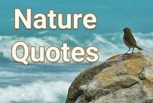 Nature Quotes / Inspiration for the soul