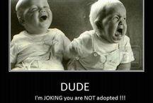 Funny / Funny stuff I liked