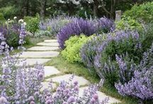 Garden / Inspiring ideas that I'll get to one of these days