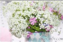 Viivulla -blog / My blog: http://viivulla.blogspot.fi/