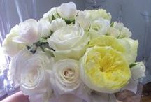 Flowers for the Bride's Wedding Party /  Bride, Bridesmaids, Maid or Matron of Honor, Bride's Attendants, Flower Girl