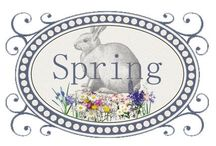 CLIP ART - SPRING - CLIPART / IMAGES RELATED TO SPRING, GARDEN, FLOWERS & ETC.  / by Melody Bray