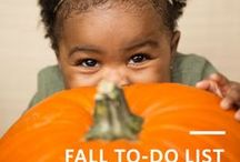 Fall Babies / Fall, Babies, and Owlet