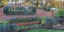 Odom's Mill / Odom's Mill is a quiet community within walking distance for A- rated middle and elementary schools in St. Johns County. It has233 single-family homes averaging in size from 2,000 to over 3,100 square feet. Most of the homes in Odom's Mill have Preserve or water views. With mature trees,and a sidewalk that leads to the neighboring elementary and middle schools, it's a great family community for all ages.