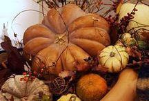 Fall / by Linda Gray