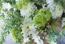 •༻✿•• Sweet Bouquets ••✿༺•