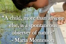 Montessori Outdoors / by Rae Pethica