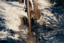 Cyclocross / Cyclo-cross races typically take place in the autumn and winter and consists of many laps of a short course featuring pavement, wooded trails, grass, steep hills and obstacles requiring the rider to quickly dismount, carry the bike while navigating the obstruction and remount. Often very muddy....