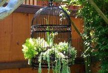 bird cage ideas + birdhouses