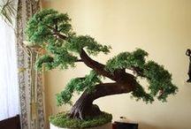 Cedar bonsai Zokei made to individual order - Bonsai zokei Cedr wykonany na indywidualne zamówienie / Sztuczne drzewko bonsai zokei Cedr wykonane na indywidualne zamówienie. Wielkość i kształt drzewka zgodnie z życzeniem klienta.