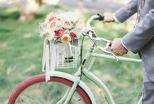 Summer Wedding Guide! / All of our favourite summer wedding inspiration!