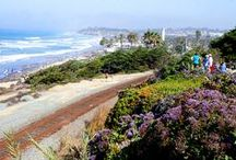 We Love...Del Mar / What makes Del Mar, CA so great? The near-perfect Mediterranean climate, great local parks and beautiful beaches just to name a few!