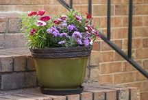 Planter Inspiration / A little inspiration for your Southern Patio planters and décor.