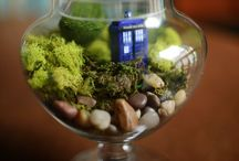 dr.who / ready for an adventure