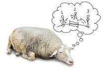 COMO DORMIR BIEN SIN SUFRIR EN EL INTENTO / Blog sobre temas de descanso.