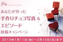 Valentine's day campaign 2013