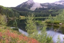 great hikes in Crested Butte / I hike up in Crested Butte alot... thought I'd post some of the great hikes I've done... so you can do them!