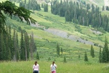 summer pics of Crested Butte / Crested Butte in summer - so beautiful!