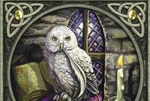 Owl... Mystical... Magical / My Spirit Animal: Wise, Intuitive, Unruffled, Assured, Reserved, Elegant, Independent, Profound