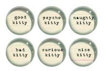 Gifts for the Crazy Cat Lady / A gift guide dedicated to the crazy cat lady | cat lover | kitten | kitty cat | cat lady | baby cat - we love you!