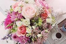 Florăria Roua / Flower shop
