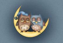 Owls / Coruja