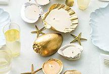 Conchas / shells