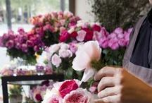 House & Garden / Gardening & Home Decorating related events in Melbourne