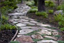 Gardening / by Bambina Pearls