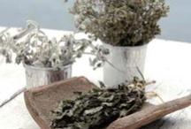 Santorinian Gastronomic Tastes