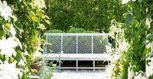 outdoor living | / plants, landscape, potting, flowers, outdoor living