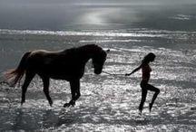 Rhapsody / In a dreamlike state of mind / by Jennifer Joy Krajewski