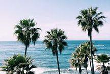 Tumblr Beach & Photography