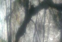Shadows-By Anda Anastasopoulou / Shadows-By Anda Anastasopoulou