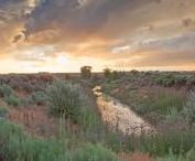 Historic Taos Acreage - Upcoming NM Auction
