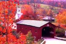 Amazing Autumn II / Autumn is my favorite season of the year! / by Lindsey Curtis