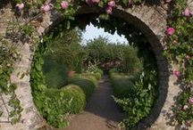 Hobbit Garden / by Lauren McCormick Fisher